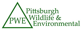 Pittsburgh Wildlife & Environmental, Inc.